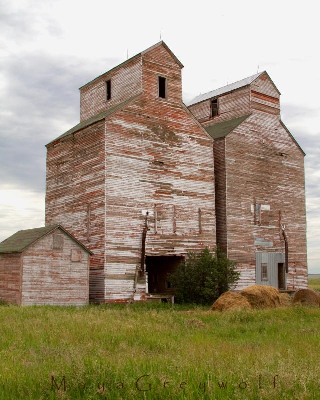 Arena Grain Elevators