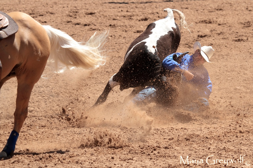 2014 Days of 76 Steer Wrestling 3 (3) Final