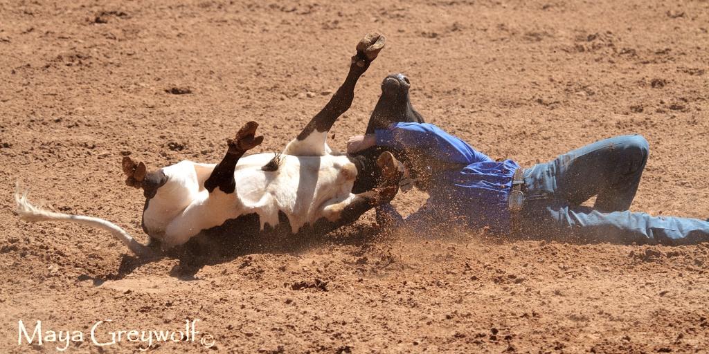2014 Days of 76 Steer Wrestling 3 (4) Final