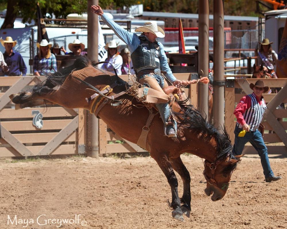 2014 Days of 76 Saddle Bronc Ride 6 (2) Final