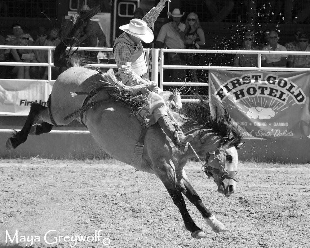 2014 Days of 76 Saddle Bronc Ride 7 Reride (4) B&W Final