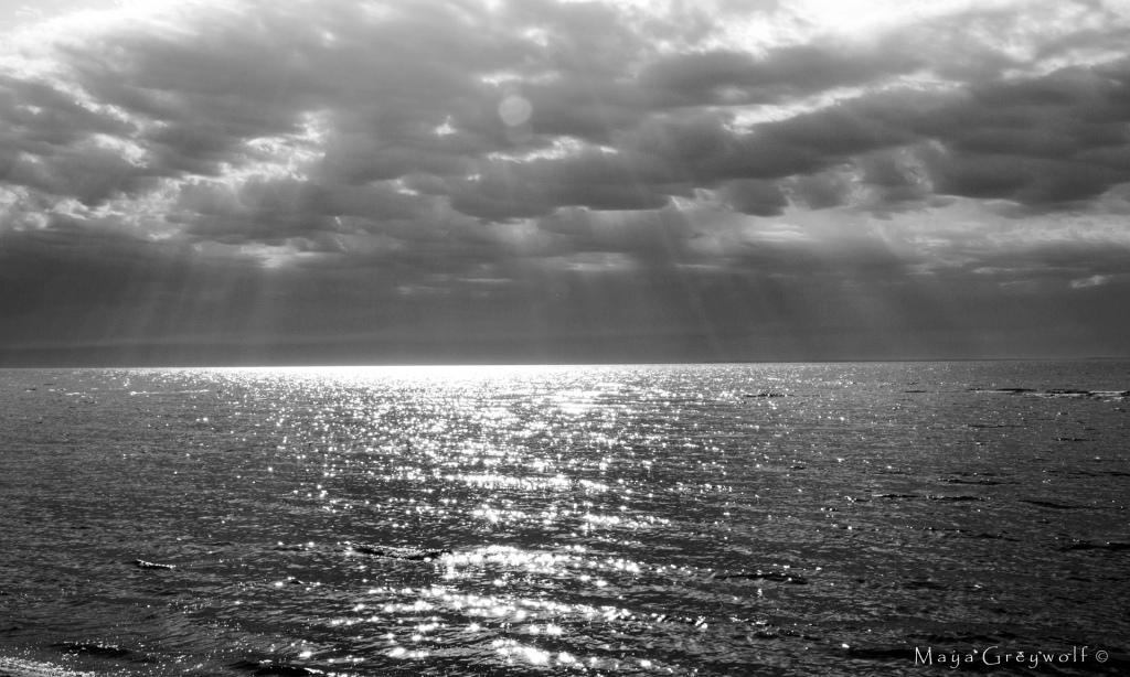Lake Michigan Black and White