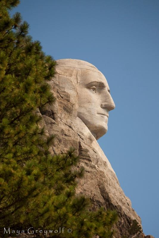 George at Rushmore 2 Final